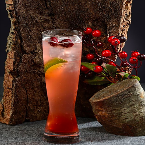 Cranberry & Pomegranate Mule